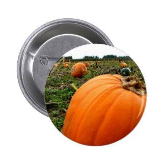 Leftover Pumpkins 2 Inch Round Button