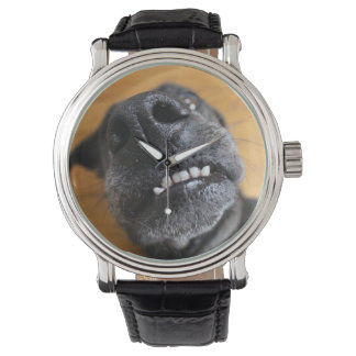 Lefty's Grill Watch