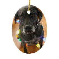 Lefy   Lights Hoiday Ornament