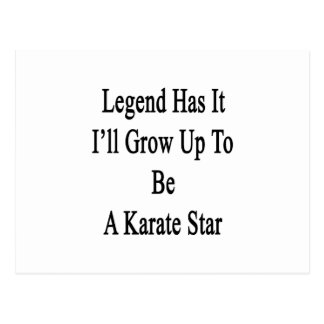 Legend Has It I'll Grow Up To Be A Karate Star Postcard