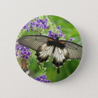 Legend of Butterflies Button