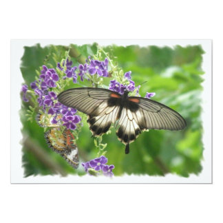 Legend of Butterflies Invitation
