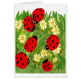 Legend of the Ladybug Card