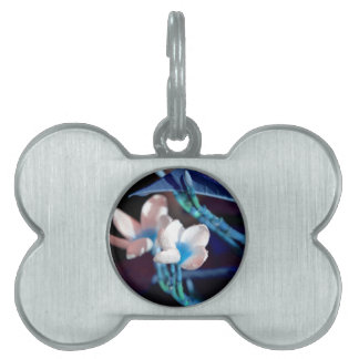 lei flower blue peach colorized pet tags