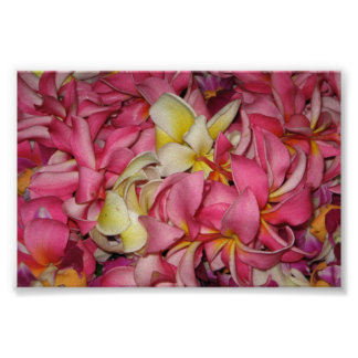 Lei Flowers for Luau Posters