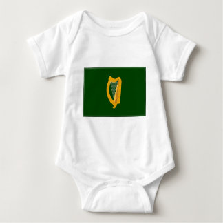 Leinster (Ireland) Flag T-shirt