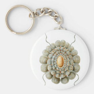 Leiosoma Basic Round Button Keychain