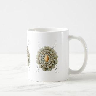 Leiosoma Coffee Mug