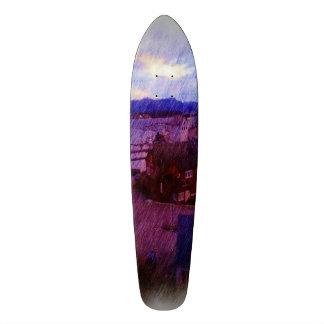 Leirvik photo painting skate decks