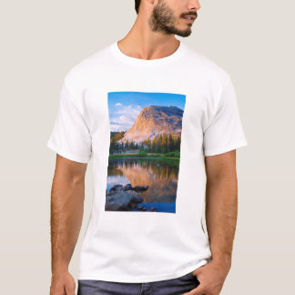 Lembert Dome scenic, California T-Shirt