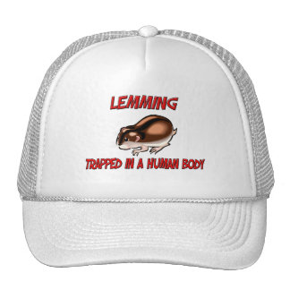 Lemming trapped in a human body mesh hat