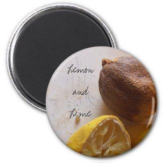 Lemon and Lime Magnet