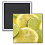 Lemon and Lime Slices Magnet