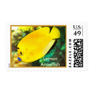 Lemon Angelfish Postage Stamp