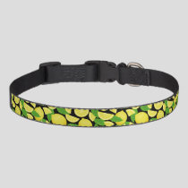 Lemon Background Pet Collar
