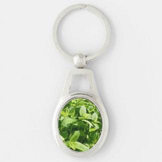 Lemon Balm Plant Keychain