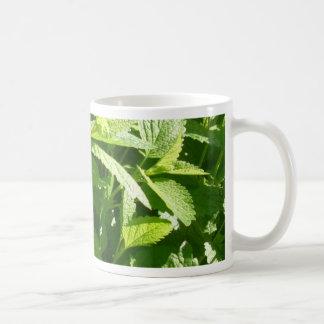 Lemon Balm Plant Mugs