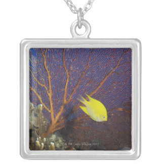 Lemon damsel square pendant necklace