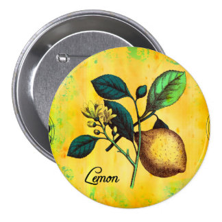 Lemon Fruit Flowers Leaves Vintage Botanical Button