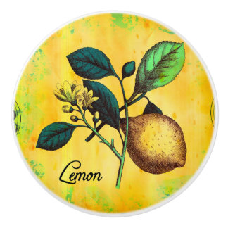 Lemon Fruit Flowers Leaves Vintage Botanical Ceramic Knob