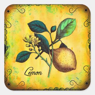 Lemon Fruit Flowers Leaves Vintage Botanical Square Sticker