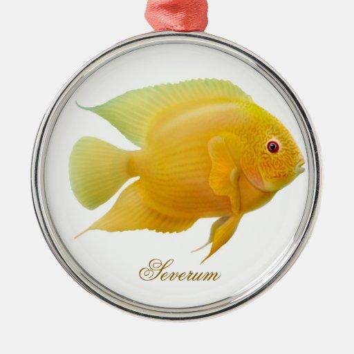 Lemon Gold Severum Aquarium Fish Ornament