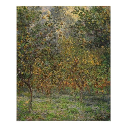 Lemon Grove en Bordighera de Claude Monet Posters