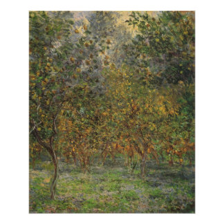 Lemon Grove en Bordighera de Claude Monet Póster