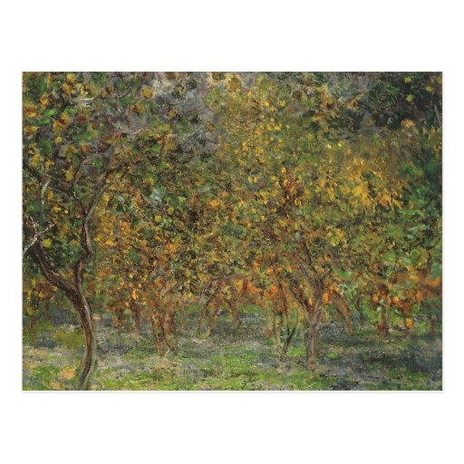 Lemon Grove en Bordighera de Claude Monet Tarjeta Postal