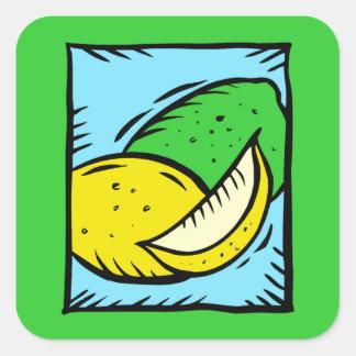Lemon Lime Fruit Tropical Juice Slice Stickers