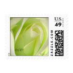 Lemon Lime Rose Small Wedding Postage Stamps Stamp