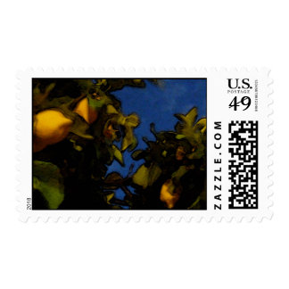 Lemon luck stamp
