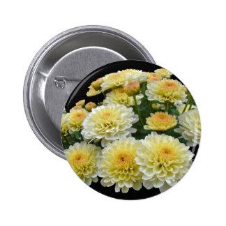 Lemon Meringue Chrysanthemums 2 Inch Round Button