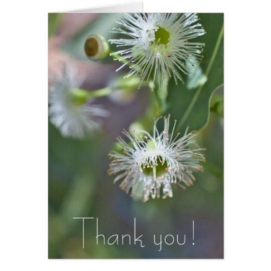 Lemon scented gum blossom Thank you Card