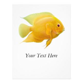 Lemon Severum Fish Flyer