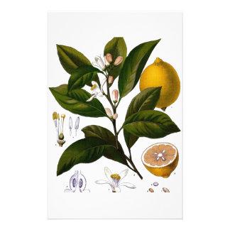 Lemon Custom Stationery