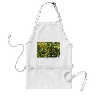 Lemon Tree Apron