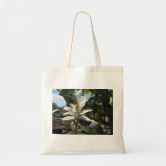 Lemon tree flowers with green leaves in background tote bag