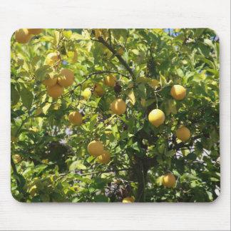 Lemon Tree Mouse Pad