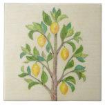"Lemon Tree wall tile<br><div class=""desc"">Pretty lemon tree on a tile.</div>"