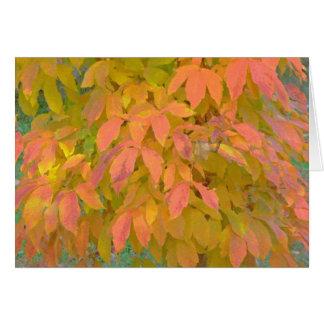 """Lemon Yellow and  Salmon Colored Leaves"" (photog) Card"