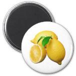 Lemons 2 Inch Round Magnet