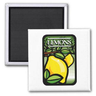 Lemons 2 Inch Square Magnet