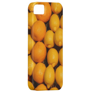 Lemons and Oranges iPhone SE/5/5s Case