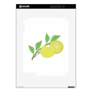 Lemons Decals For The iPad 2