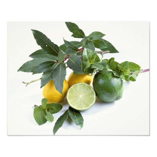Lemons For use in USA only.) Photo Print