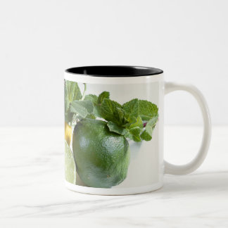 Lemons For use in USA only.) Two-Tone Coffee Mug