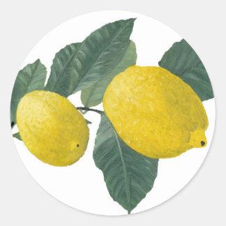 Lemons on a branch classic round sticker
