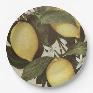 Lemons paper plate