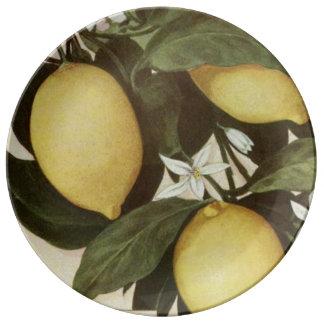 Lemons porcelain plate